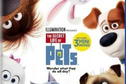 The Secret Life of Pets 爱宠大机密 3D左右 2016 MKV