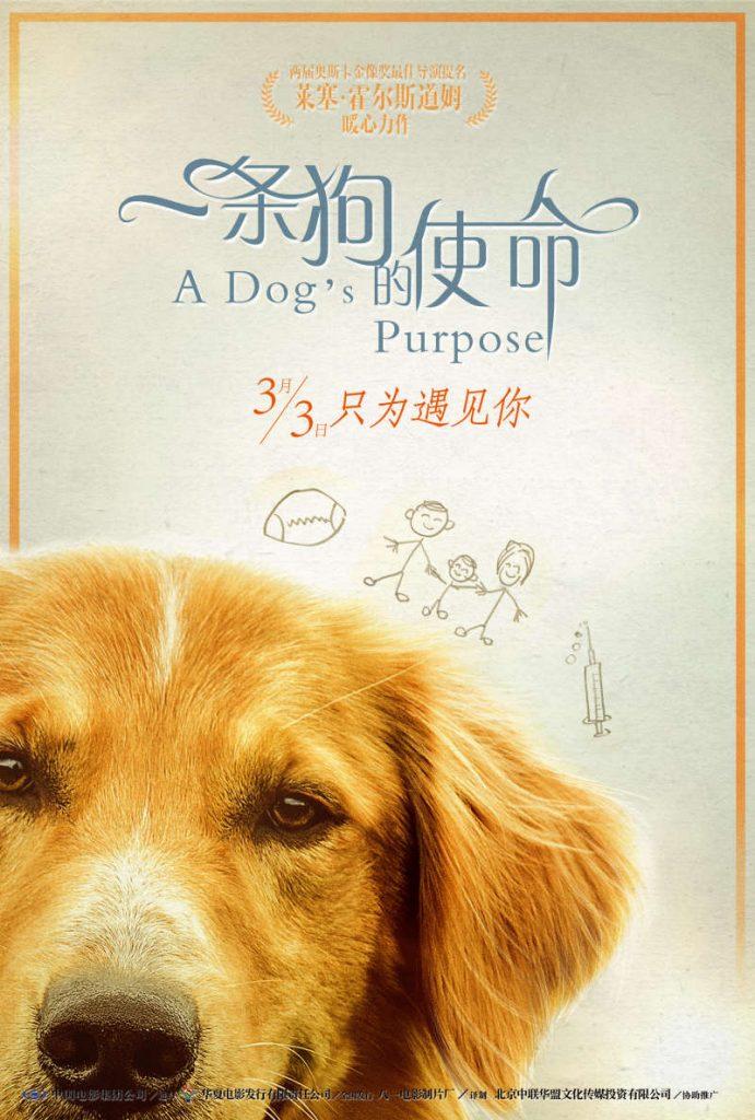 A Dogs Purpose 一条狗的使命 2017 MKV